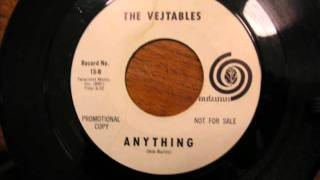 The Vejtables - Anything   1966  45 rpm  rare