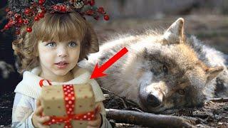 Мужчина связал и выбросил КОРМЯЩУЮ волчицу в лесу ради подарка для своей ДОЧЕРИ
