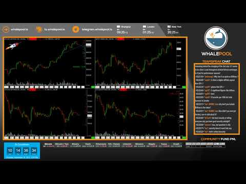 Whalepool: Live Bitcoin / Cryptocurrency Trading Pit