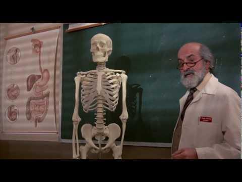 Bad Medicine 1985 720pFullMovie