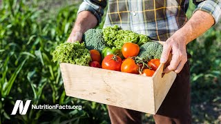 Are Organic Foods Safer?