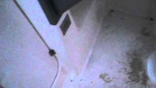 2004Bayliner 285.AVI(катера от Питер Марин., 2011-12-11T18:19:00.000Z)
