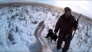 4.12.2015- Охота на зайца (МР-155).