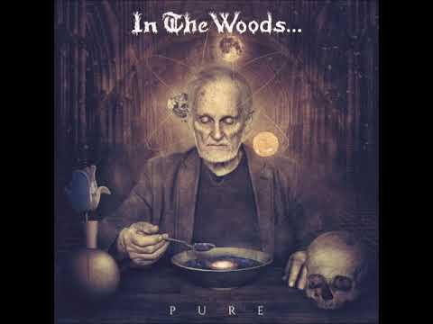 In the Woods... - Pure [Full Album] 2015 thumb