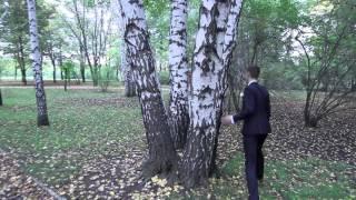 Свадьба Елены и Владислава