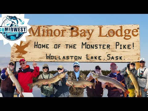 Catching Monster Pike On Wollaston Lake, Minor Bay Lodge, July 10th-16th