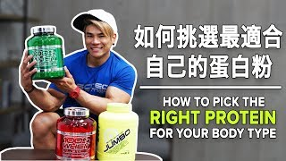 如何挑選最適合自己的蛋白粉 | How to Pick the Right PROTEIN for Your Body Type | Terrence Teo