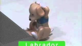パソコンのUSBポートに挿すとひたすら腹筋をする犬です。 抜くまで腹筋...