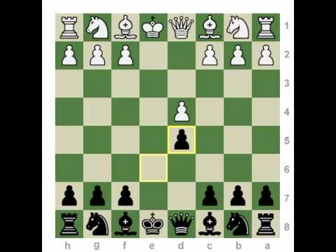 Chess Openings: How to Play the French Defense!