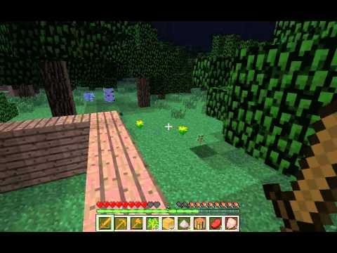 Minecraft Maceraları Bölüm 1: İlk Gece Hayatta Kalmak
