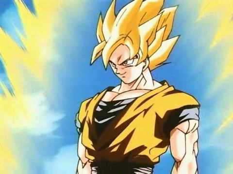 Goku A Warrior from an Unknown Land