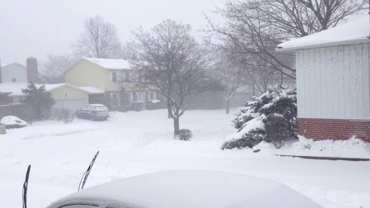 Snow Storm Toronto: Snow Storm!! Toronto