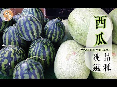 【夏】西瓜的挑選方法