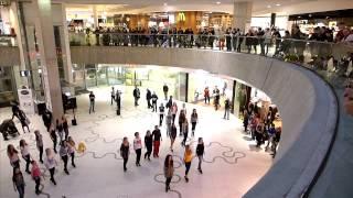 Irish Flash Mob Vienna 2014 - Wien Mitte The Mall