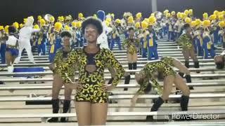 YCDT Supastarz/ MNW GGirls Cheetah Girls 18-19