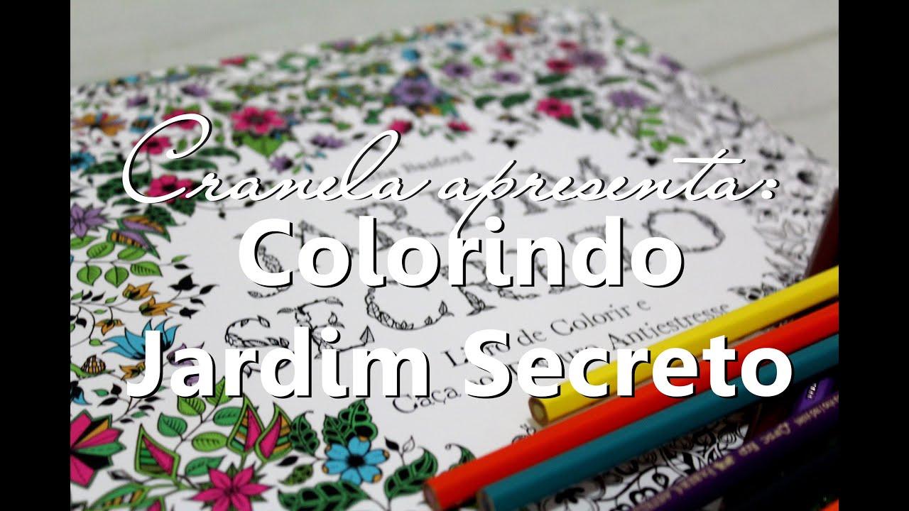 Livros De Colorir Para Adultos Relaxe E Mostre Seu Talento