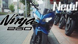 新型Ninja250は全く別物だった!?|kawasaki Ninja250 2018