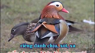 karaoke trich doan To Anh Nguyet nam ai -ca voi 545.wmv