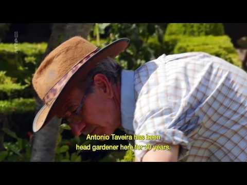 Jardins d'ici et d'ailleurs   Casa de Mateus Portugal