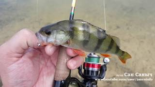Июльский мормышинг, рыбалка на спиннинг