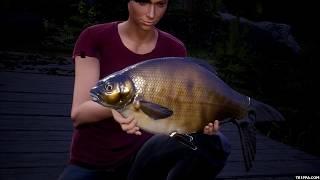 Euro Fishing Waldsee Gameplay (PC Game DLC)