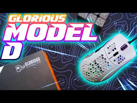 Glorious Model D Gaming Mouse FULL REVIEW: A Handful of Gaming Goodness