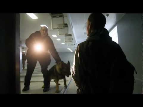 Urban explorers arrested at animal testing/neuroscience labs.
