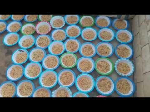 DAY 8 DAILY IFTAR MEAL IN SYRIA RAMADAN 2016