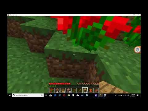 minecraft survival PC part 1