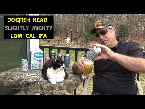 Dogfish Head Slightly Mighty Low-Cal IPA