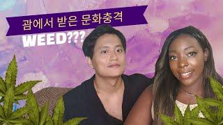 culture shock in guam korean r…