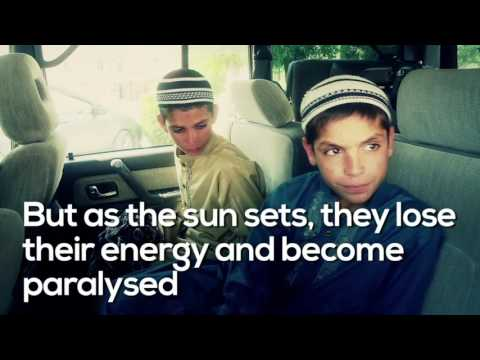Pakistan's 'Solar Kids' Live Normal Lives by Day, Become Mysteriously Paralyzed at Night