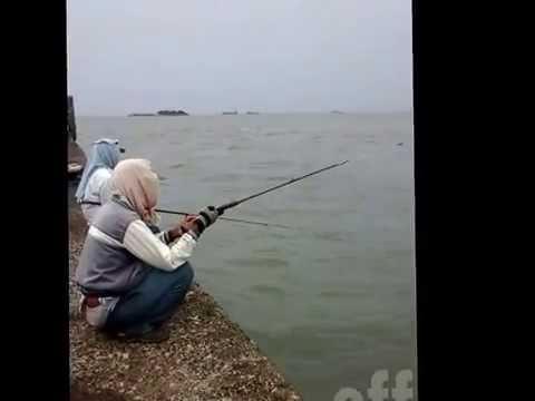 Duel Mancing Pelabuhan Cirebon