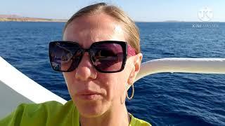 ВЛОГ Выводы по отелю Dreams Beach Resort 5 Sharm el Sheikh ноябрь 2020 года