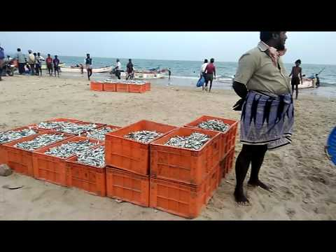 Tuticorin harbour beach