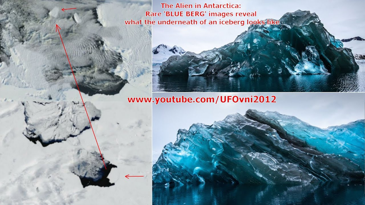 Image result for aliens in antarctica
