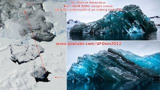 The Alien in Antarctica: Rare