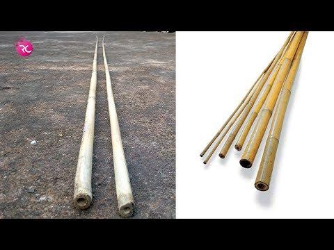 Talda Bamboo Fishing Rod Making - তলডা বাঁশের ছিপ তৈরী | Rozina's Club