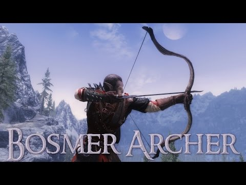 Teso Build Archer Dps