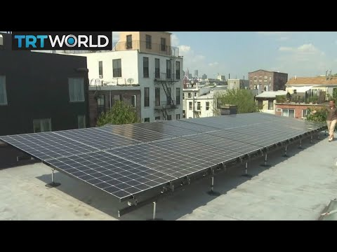 Money Talks: App allows users to sell home-made solar energy