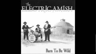 The Electric Amish   Give Me Three Pigs