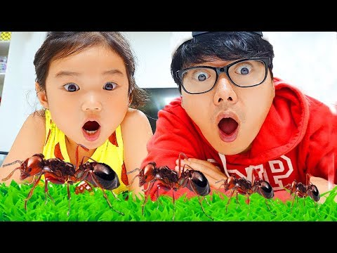 瓿れ订鞚� 毂勳頃橂姅 觳唽旮瓣皜 鞛堧嵃鞖�!! 鞛レ垬頀嶋巺鞚� 鞛犾瀽毽� 昕�氩� 雱れ澊斐� 氚旍毚霌� 鞛ル倻臧愳溂搿� 毂勳 頃橁碃 甏�彀半唨鞚� Insects and Bugs for Kids Learning
