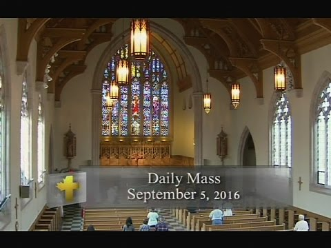 Daily Mass, Monday 5 September 2016
