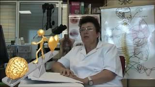 4. Значение нервной системы в регуляции системы кровоснабжения.