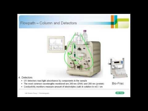Chromatography 101: An Introduction to Medium-Pressure Chromatography