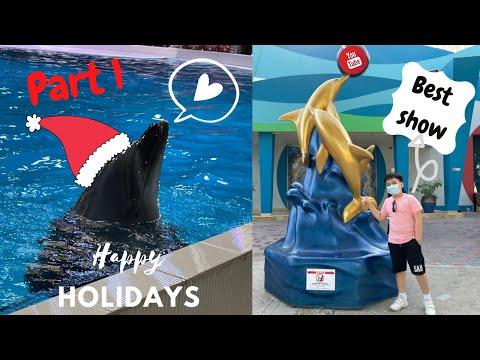 Dubai Dolphinarium 2020 | Part 1 | Exciting show | Vlog #18