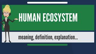 What is HUMAN ECOSYSTEM? What does HUMAN ECOSYSTEM mean? HUMAN ECOSYSTEM meaning & explanation