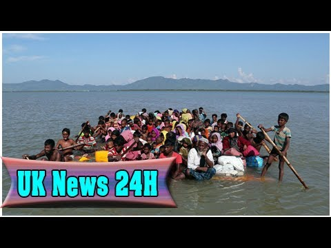 Rohingya treatment amounts to 'dehumanising apartheid' - amnesty report  UK News 24H