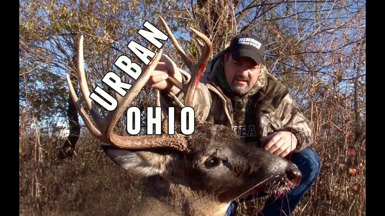 Urban Ohio Deer Hunting With a Crossbow