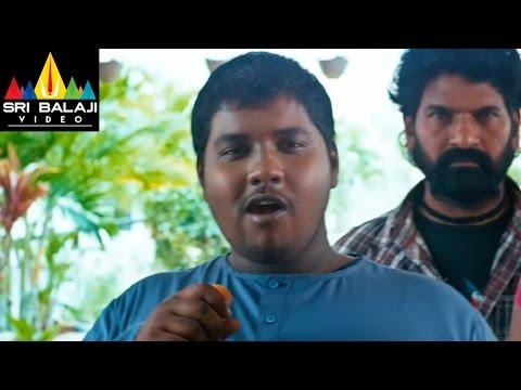 Swamy Ra Ra Movie Ravi Babu Comedy Scene in Swati House   Nikhil, Swathi   Sri Balaji Video